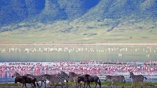 picture of Ngorongoro Crater