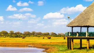 picture of Tsavo Park