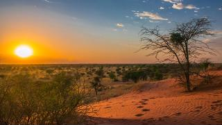 picture of Central Kalahari Game Reserve