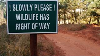 picture of Mlilwane Wildlife Sanctuary