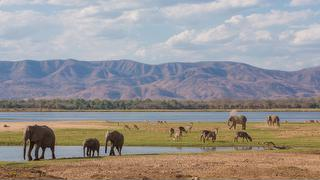 picture of Mana Pools National Park