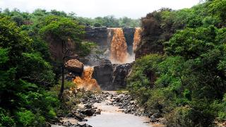 picture of Awash National Park
