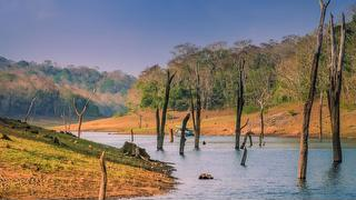 picture of Nechisar National Park