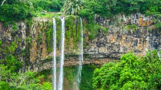 picture of Chamarel Waterfall