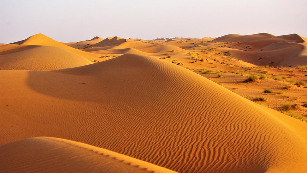 Profile picture of Wahiba Sands