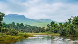 picture of Congo Travel and Tours