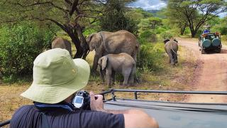Tour picture - Southern Tanzania Package by Nomad Tanzania