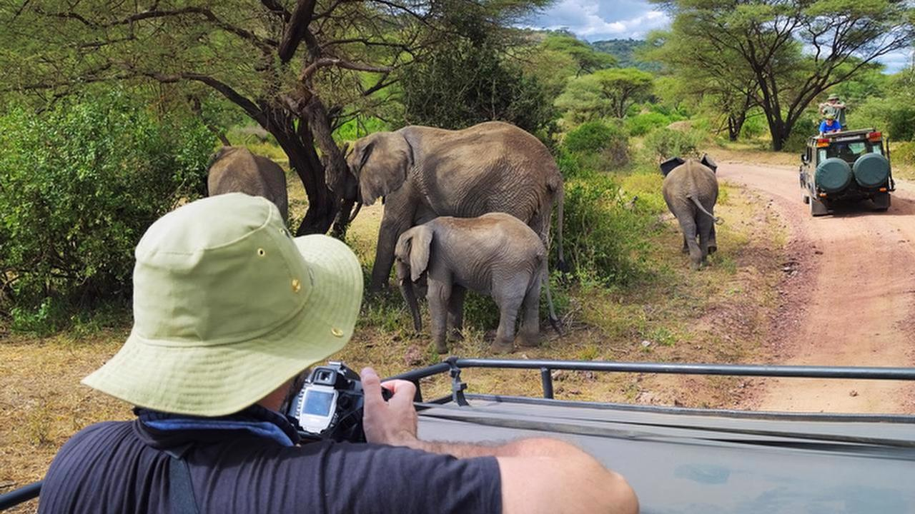 Profile picture for Southern Tanzania Package by Nomad Tanzania